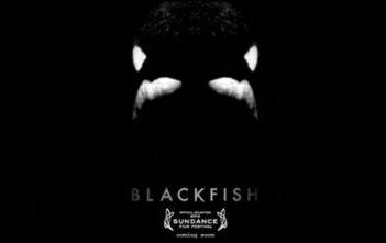 "Trailer του Ντοκυμαντέρ ""Blackfish"""