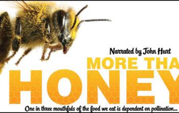 """Trailer του Ντοκυμαντέρ """"More Than Honey"""""""