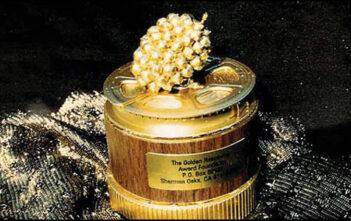 Οι Υποψηφιότητες Για Τα Χρυσά Βατόμουρα
