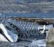 """Πρώτο Trailer Απο Το Δραματικό """"Leviathan"""""""