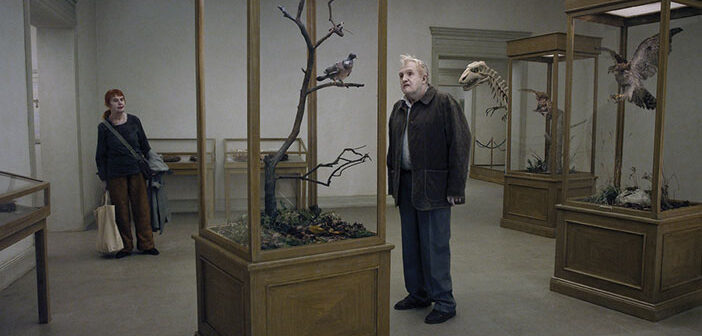 """""""A Pigeon Sat On A Branch Reflecting On Existence"""""""