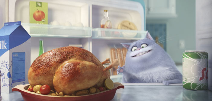 "Πρώτο Trailer Απο Το ""The Secret Life of Pets"""