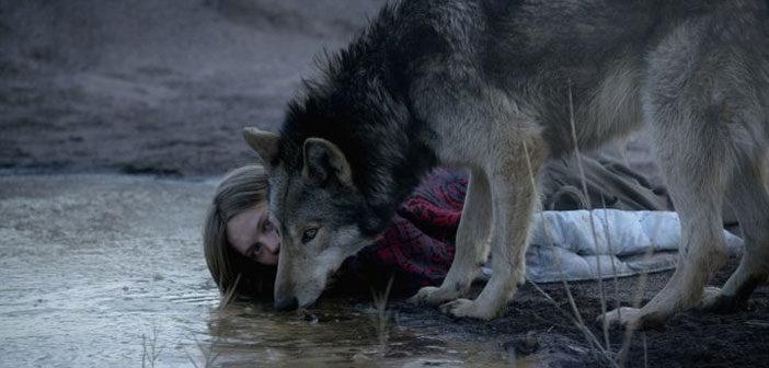 """Πρώτο Trailer Απο Το """"Wild"""""""