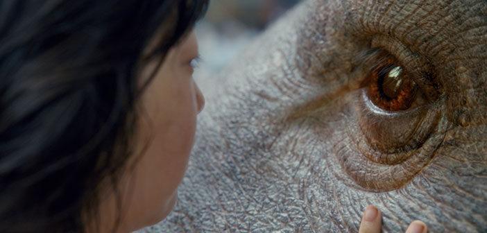 """Νέο Trailer Απο Το """"Okja"""""""