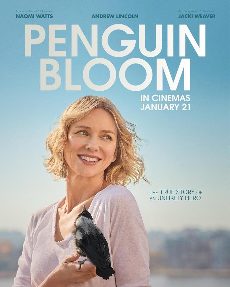 """Πρώτο Trailer Από Το """"Penguin Bloom"""""""